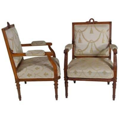 Louis XVI Style Armchairs- 19th century- styylish